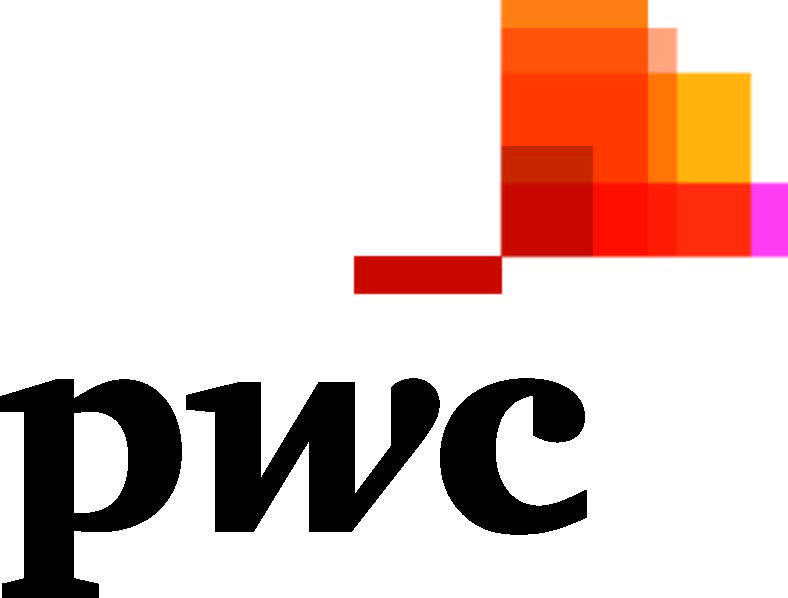 PwC_fl_4cp (clipped)